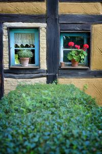 Neighbor Window by Philippe Sainte-Laudy