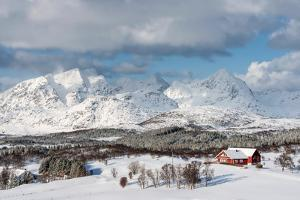 Paradise Is Here by Philippe Sainte-Laudy