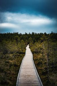 Path to the Unknown by Philippe Sainte-Laudy