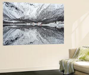 Reflection Lofoten by Philippe Sainte-Laudy