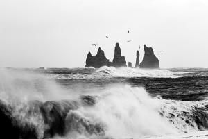 Reynisdrangar Birds by Philippe Sainte-Laudy