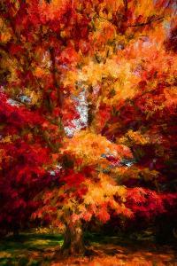 Seasonal Beauty by Philippe Sainte-Laudy