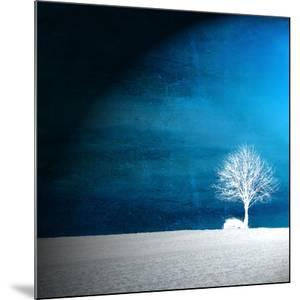 Sensation in Blue by Philippe Sainte-Laudy