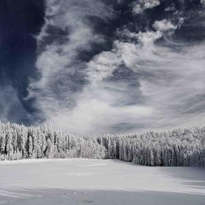 Snowy Sky by Philippe Sainte-Laudy