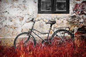 The Forgotten Bike by Philippe Sainte-Laudy
