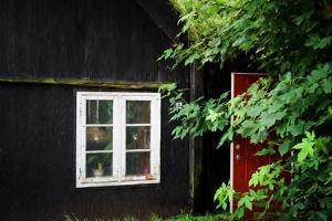 The Hidden Door by Philippe Sainte-Laudy