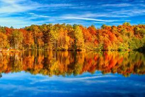 The Two Faces of Fall by Philippe Sainte-Laudy