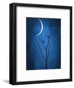 Under the Moon 1 by Philippe Sainte-Laudy