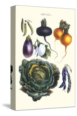 Vegetables; Eggplant, Beans, Cabbage, Turnips
