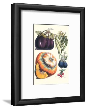 Vegetables; Eggplant, Raddish, Pumpkin, Gourd, Pepper and Okra