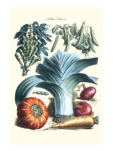 Vegetables; Peas, Pods, Onions, Leeks, and a Gourd by Philippe-Victoire Leveque de Vilmorin