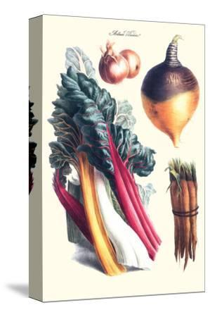 Vegetables; Rhubard, Carrot, Onion, Turnip