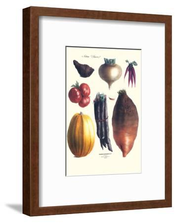 Vegetables; Tomato, Raddish, Sweet, Pumpkin, Carrots, Yam