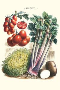 Vegetables; Tomato Varieties, Celery, and Potato by Philippe-Victoire Leveque de Vilmorin