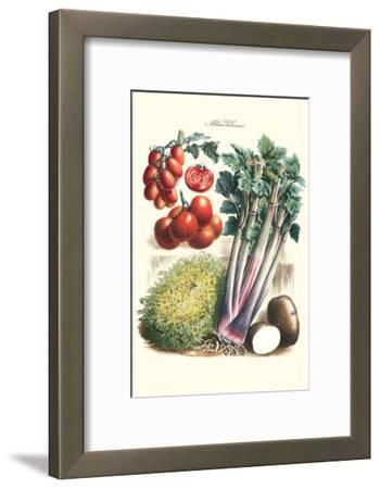 Vegetables; Tomato Varieties, Celery, and Potato