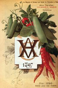 Vilmorin Catalog 1897 by Philippe-Victoire Leveque de Vilmorin