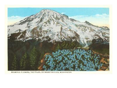 Phlox on Mt. Rainier, Washington--Art Print