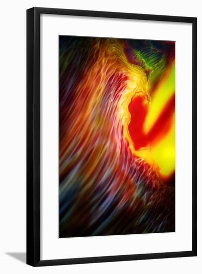 Phoenix 1-Ursula Abresch-Framed Photographic Print