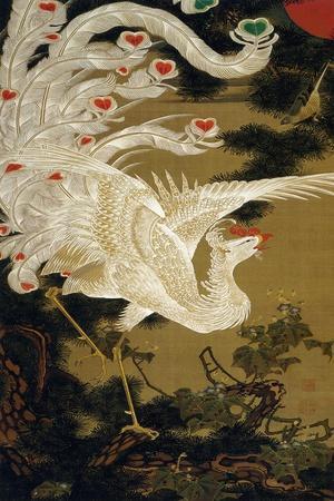 https://imgc.artprintimages.com/img/print/phoenix-on-the-pine_u-l-pn9zd20.jpg?artPerspective=n