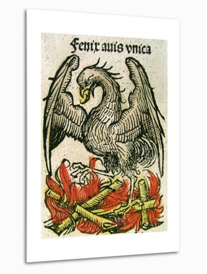 Phoenix Published in the Nuremberg Chronicle, 1493--Metal Print