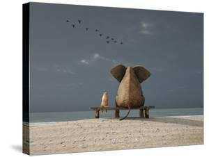 Elephant and Dog Sit on a Beach by Photobank gallery