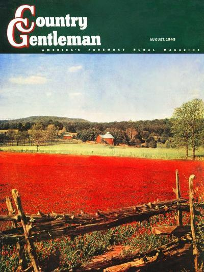 """Photographic Landscape,"" Country Gentleman Cover, August 1, 1945-R.A. Mawhinney-Giclee Print"