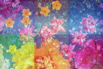 https://imgc.artprintimages.com/img/print/photographic-layer-work-from-flowers-and-trees_u-l-q11wnq50.jpg?p=0