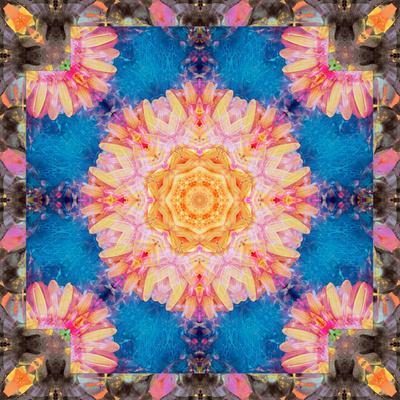 https://imgc.artprintimages.com/img/print/photographic-mandala-ornament-from-flowers_u-l-q11z8050.jpg?p=0