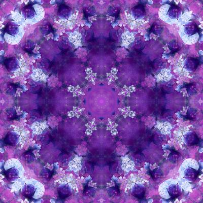 https://imgc.artprintimages.com/img/print/photographic-mandala-ornament-in-purple-tones_u-l-q11z7y90.jpg?p=0