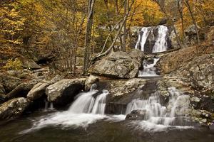 Lower White Oak Canyon Falls by Photography by Deb Snelson