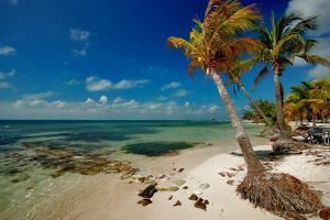 Isla Mujeres by photography is life .... so my life!
