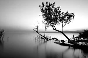 Great Lake by PhotoINC