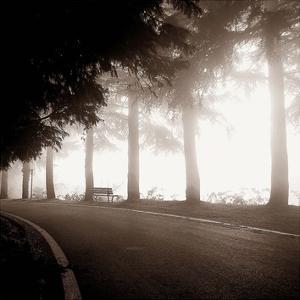 Roadside Bench by PhotoINC Studio