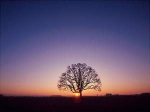 Sundown by PhotoINC Studio