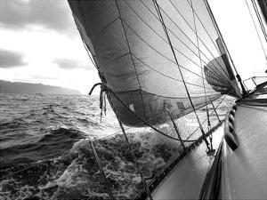 Waves by PhotoINC Studio