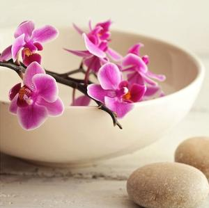 Zen Pebble by PhotoINC Studio