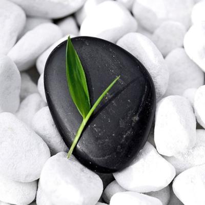 Zen Stone by PhotoINC Studio