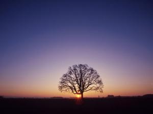 Sundown by PhotoINC