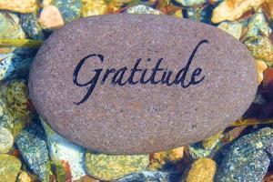 Gratitude by photojohn830