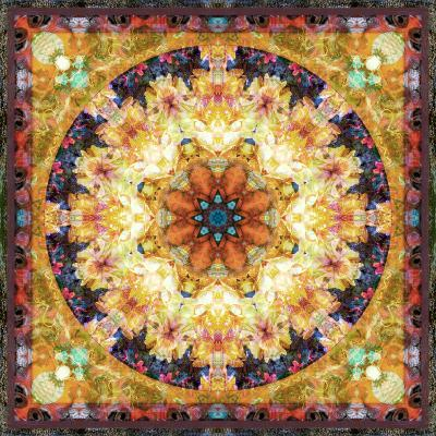 Photomontage of Flowers and Textures in a Symmetrical Ornament, Mandala-Alaya Gadeh-Photographic Print
