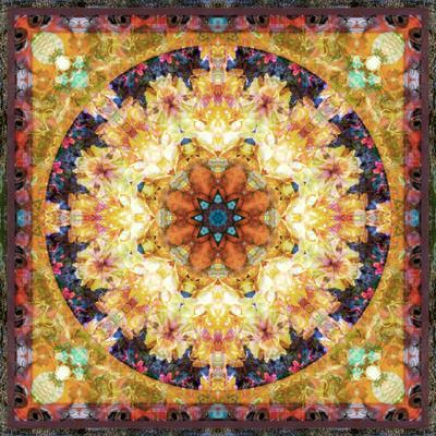 https://imgc.artprintimages.com/img/print/photomontage-of-flowers-and-textures-in-a-symmetrical-ornament-mandala_u-l-q11z7js0.jpg?p=0