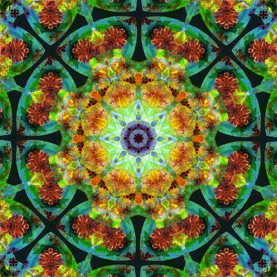 Photomontage of Flowers in a Symmetrical Ornament, Mandala-Alaya Gadeh-Photographic Print
