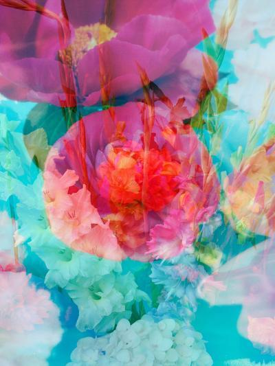 Photomontage of Flowers in Water-Alaya Gadeh-Photographic Print
