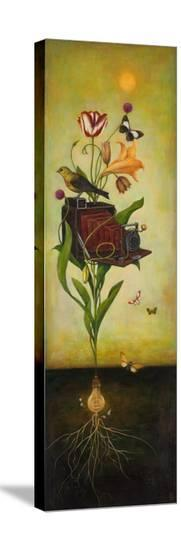 Photosynthesis Bliss-Duy Huynh-Stretched Canvas Print