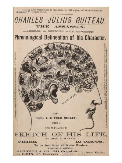 Phrenological Chart of the Brain of Charles J. Guiteau, Assassin of President James Garfield, 1880s--Photo