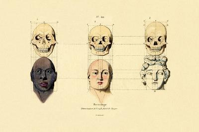 Phrenology, 1833-39--Giclee Print