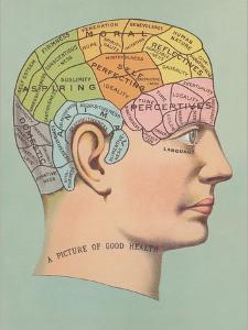 Phrenology Chart of Head