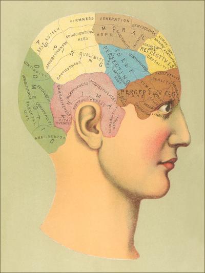 Phrenology Chart-Found Image Press-Art Print