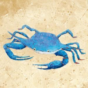 Blue Crab V Neutral Crop by Phyllis Adams