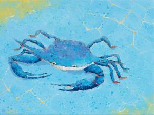 Blue Crab V by Phyllis Adams